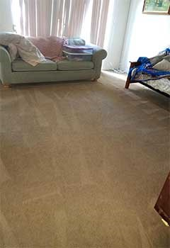 Local Carpet Cleaning Services In Granada Hills