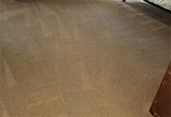 Carpet Cleaner Company | Granada Hills